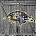 Baltimore Ravens by Joe Hamilton