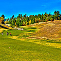 #12 At Chambers Bay Golf Course - Location Of The 2015 U.s. Open Championship by David Patterson