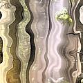 Dream Forest by Odon Czintos