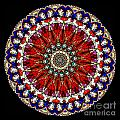 Kaleidoscope Stained Glass Window Series by Amy Cicconi