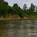 Sunset Bay State Park by Gail Peters