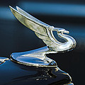 1935 Chevrolet Sedan Hood Ornament Print by Jill Reger