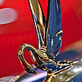 1948 Packard Hood Ornament by Jill Reger