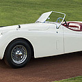1954 Jaguar Xk120 Roadster  by Jill Reger