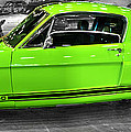 1965 Shelby Mustang ...