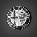 1986 Alfa Romeo Spider Quad Emblem by Jill Reger