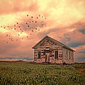 Abandoned Building In A Storm by Jill Battaglia