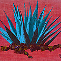 Agave by Greg Wells