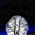 Black Cat On Tree by Nina Ficur Feenan