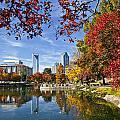 Charlotte North Carolina Marshall Park by Jill Lang