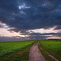 Countryside Landscape Path Leading Through Fields Towards Dramat by Matthew Gibson