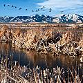 Great Salt Lake Utah by Utah Images