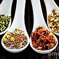Herbal Teas by Elena Elisseeva