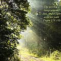 Light Unto My Path by Thomas R Fletcher