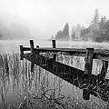 Loch Ard Early Mist by John Farnan