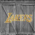 Los Angeles Lakers by Joe Hamilton