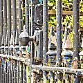 Old Gate by Tom Gowanlock