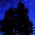 Star Trails In Night Sky by Lane Erickson