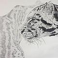 2D leopard