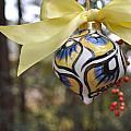 Majolica Maiolica Ornament by Amanda  Sanford