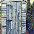 Garden Shed Print by Amanda And Christopher Elwell