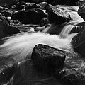 Richland Creek by Garry McMichael