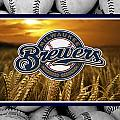 Milwaukee Brewers by Joe Hamilton