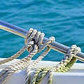 The Ropes by Laura Fasulo