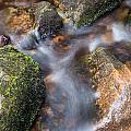Landscape Of Becky Falls Waterfall In Dartmoor National Park Eng by Matthew Gibson