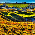 #9 At Chambers Bay Golf Course - Location Of The 2015 U.s. Open Tournament by David Patterson