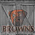 Cleveland Browns by Joe Hamilton