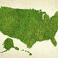 United State Grass Map by Aged Pixel