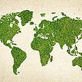 World Grass Map by Aged Pixel