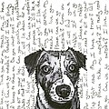 A Conversation With A Jack Russell Terrier by Salvadore Delvisco
