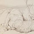 A Dead Stag by Sir Edwin Landseer