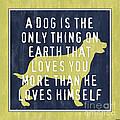 A Dog... by Debbie DeWitt