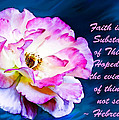 A Faithful Rose and ...