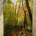 A Fall Walk With My Best Friend by Sandi OReilly