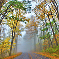 A Foggy Drive Into Autumn - Blue Ridge Parkway by Dan Carmichael