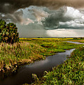 A Glow On The Marsh by Christopher Holmes