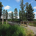 A Man's View Of Red Tail Lake by Lizbeth Bostrom