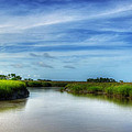A Marsh At Jekyll Island by Greg and Chrystal Mimbs