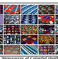 A Menagerie Of Colorful Quilts  by Barbara Griffin