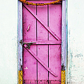 A Pink Door by Tim Gainey