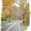 A Quiet Country Road by Bill Losey