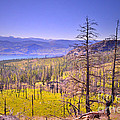 A View From Okanagan Mountain by Tara Turner
