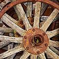 A Wheel In A Wheel by Phyllis Denton