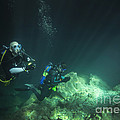 A Young Married Couple Scuba Diving by Michael Wood