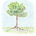 A Young Tree by Keiko Katsuta