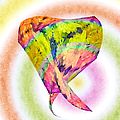Abstract Crazy Daisies - Flora - Heart - Rainbow Circles - Painterly by Andee Design